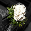 Royalty-Free Stock Photo: Beautiful White Gladiolus in the church - wedding