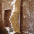 Venus de Milo — Stock Photo #10202678