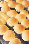 Close up fresh bread on cooling tray — Stock Photo