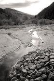 Small mountain stream. — Stock Photo