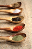 Colored spices on wooden spoons. — Stock Photo