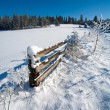 Stock Photo: Winter landscape.