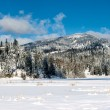 Rathdrum mountain in winter. — Stock Photo