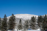 Snowy Rathdrum mountain. — Stock Photo