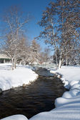Stream in a park during winter. — Stock Photo