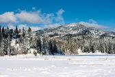 Rathdrum mountain in winter. — Stock Photo