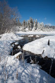 Creek in a snow covered field. — Stock Photo