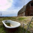 Stock Photo: Tub in barnyard.