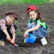 Two kids watering the sprout — Stock Photo