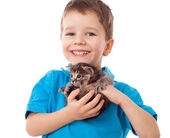 Smiling little boy with kitty in hands — Stock Photo