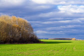 Autumn landscape with green meadow — Stock Photo