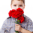 Stock Photo: Boy with bouquet of carnations