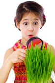 Girl looking through a magnifier at the grass — Stock Photo
