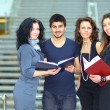 Group of students talking and holding notebooks — Stock Photo #10374390