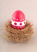 Easter Egg — Stock Photo