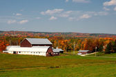 Dairy farm in fall — Foto Stock