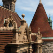 Roof top peaks and architecture - Stok fotoraf
