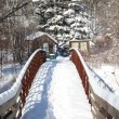 Footsteps across snowy bridge — Stock Photo #8236892