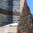 Christmas at city hall toronto — Stock Photo