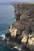 Sportovní rybář rybolovu při nebezpečné útesy z pobřeží havaje velký ostrov — Stock fotografie
