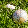 Earth globe on spring grass — Stock Photo