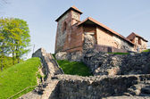 Vilnius historical Gediminas castle ruins — Stock Photo