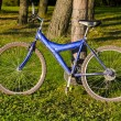Stock Photo: Bicycle in forest