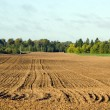 Stock Photo: Autumn tillage field