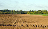 Autumn tillage field — Stock Photo