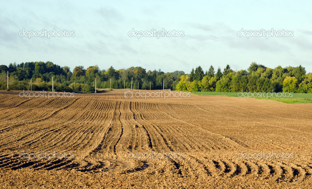 Autumn tillage field in September — Stock Photo #8240638