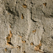 Old concrete and clay wall background — Stockfoto