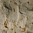 Old concrete and clay wall background — Stock Photo