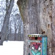 Winter birdseed on the painted nesting-box — Stock Photo