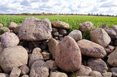 Agrarian landscape with stones — Stock Photo
