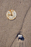 Rusted clock dial on the sea beach sand — Stock Photo