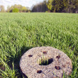 Stock Photo: Historical millstone in crop field