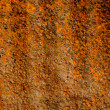 Old and grunge rusted tin background — Stock Photo