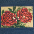 Ancient photo album cover background with roses — Stock Photo