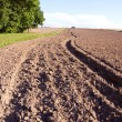 Stock Photo: Summer end tillage in farm