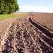 Summer end tillage in the farm — Stock Photo