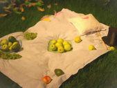 草の上のピクニック — ストック写真