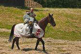 Equestrian Crusader — Stock Photo