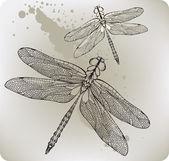 Flying dragonfly, hand-drawing. Vector illustration. — Stock Vector