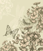 Floral background with blooming phlox and flying butterflies, hand-drawing. — Stock Vector