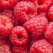Closeup of fresh raspberries - Stock Photo