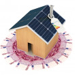 Save with an ecological house — Stock Photo