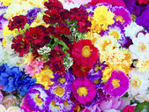 Background of colorful artificial flowers — Stock Photo