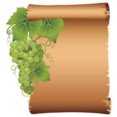 Grape branch with parchment — Vector de stock