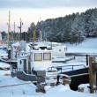 Boats moored in winter — Stock Photo #8742206