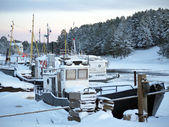 Boats moored in the winter — Stock Photo